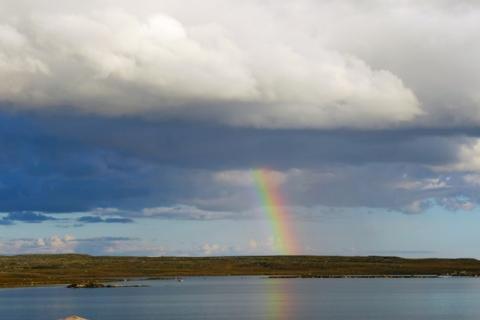 Rainbow on the Barren-lands at Daring Lake. Photo:  Jody Pellissey, WRRB