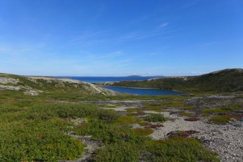 The Barren-lands at Daring Lake. Photo:  Jody Pellissey, WRRB