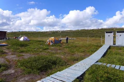 Setting up camp at Tundra Ecosystem Research Station. Photo:  Jody Pellissey, WRRB