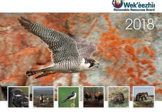 WRRB Calendar 2018 Cover