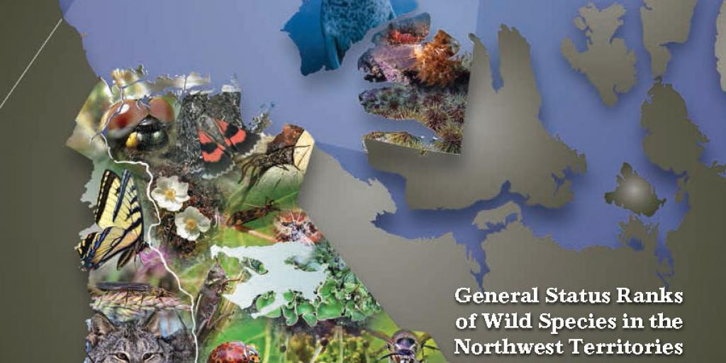 Cover of NWT Species 2016-2020 Report